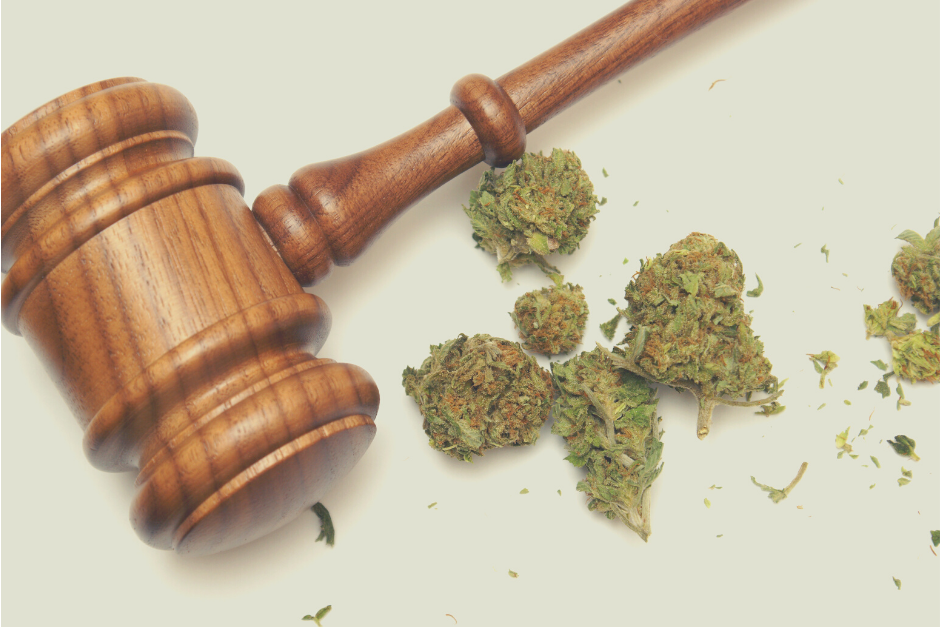 What You Need to Know About Changing Marijuana Laws